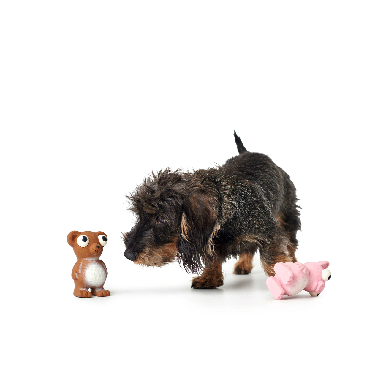 Hunter Hundespielzeug Auckland 65597, Bild 5