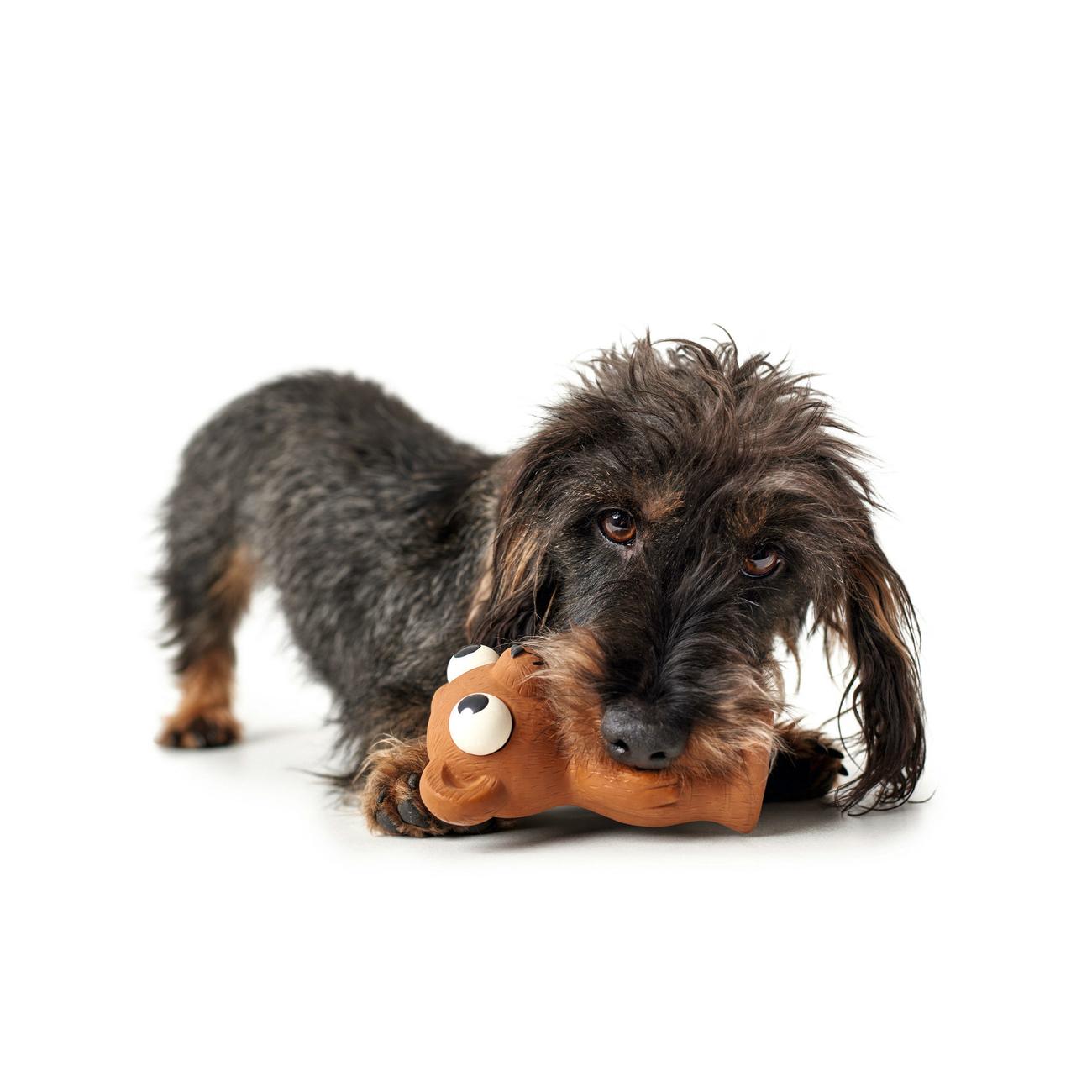 Hunter Hundespielzeug Auckland 65597, Bild 6