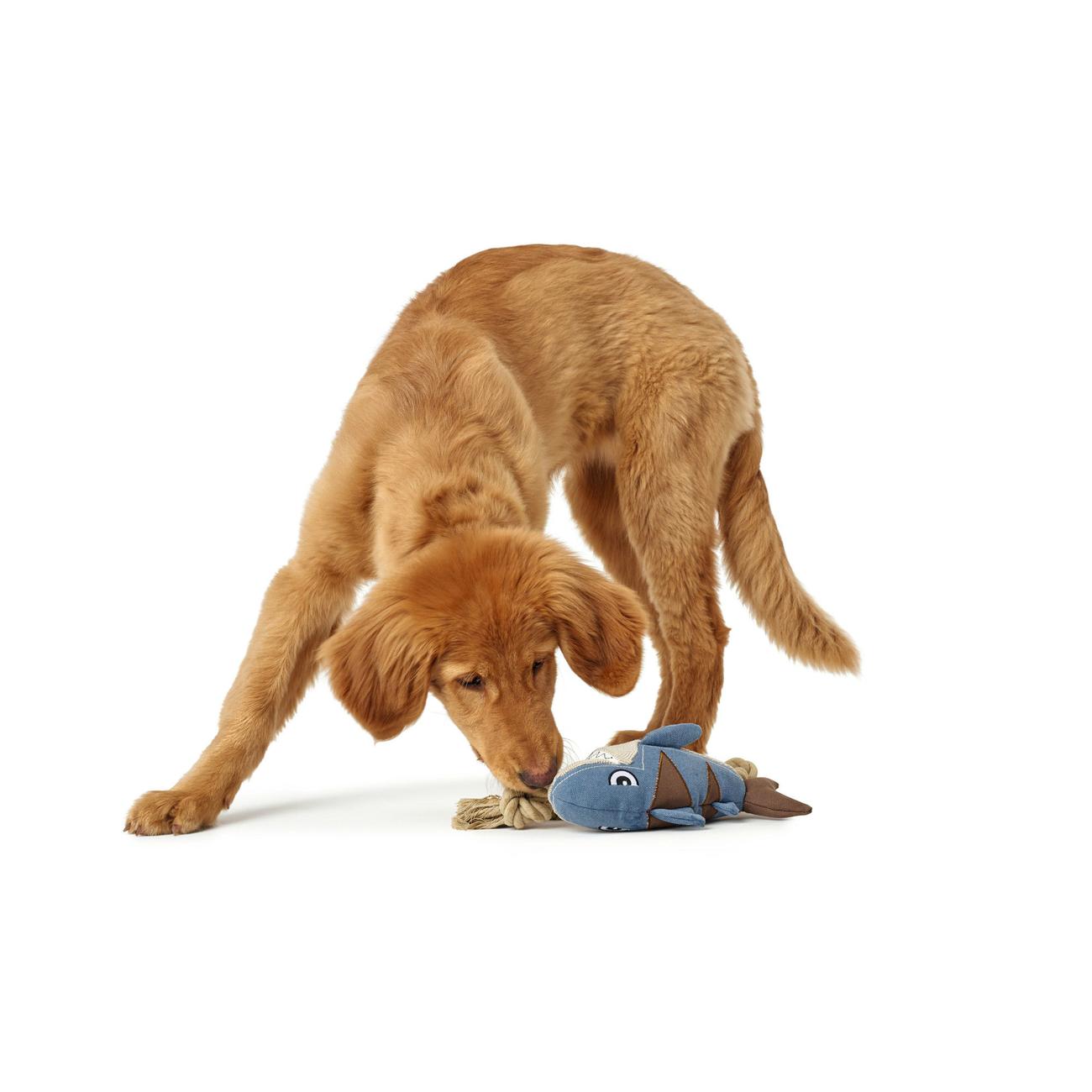 Hunter Hundespielzeug Canvas Sansibar Rantum 65660, Bild 3