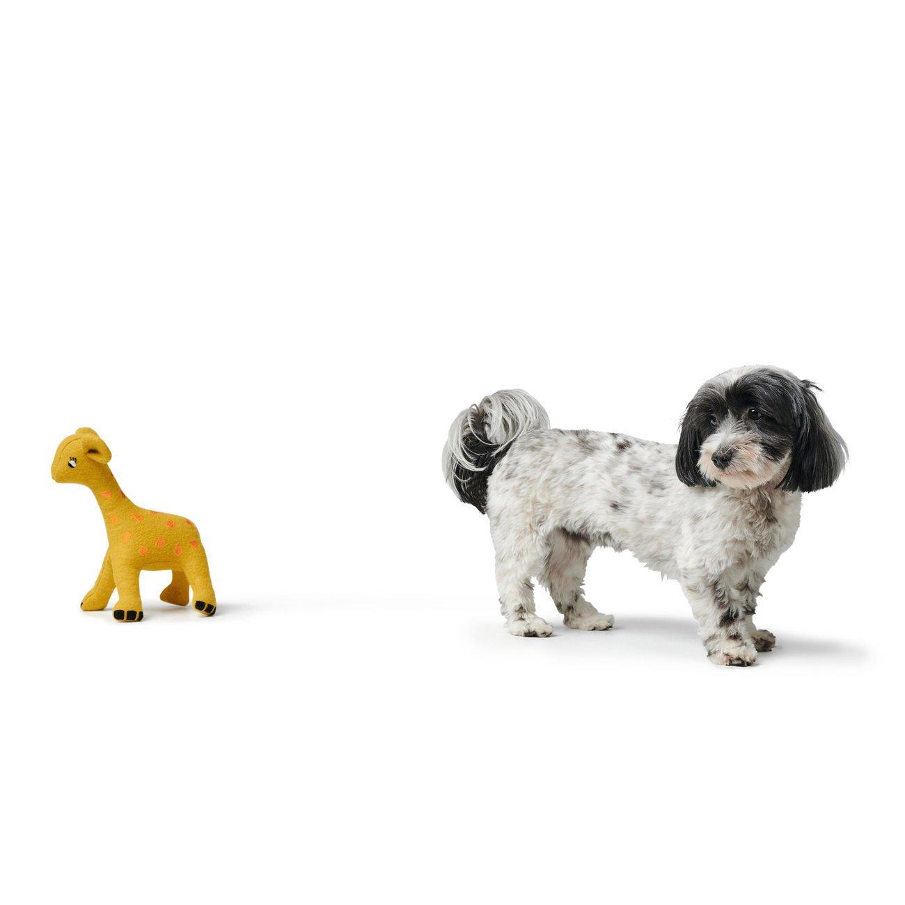 Hunter Hundespielzeug Eiby 68642, Bild 9