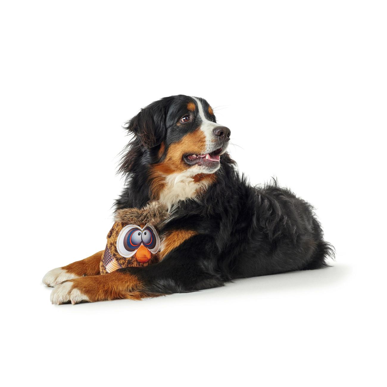 Hunter Hundespielzeug Gurupi 65725, Bild 4