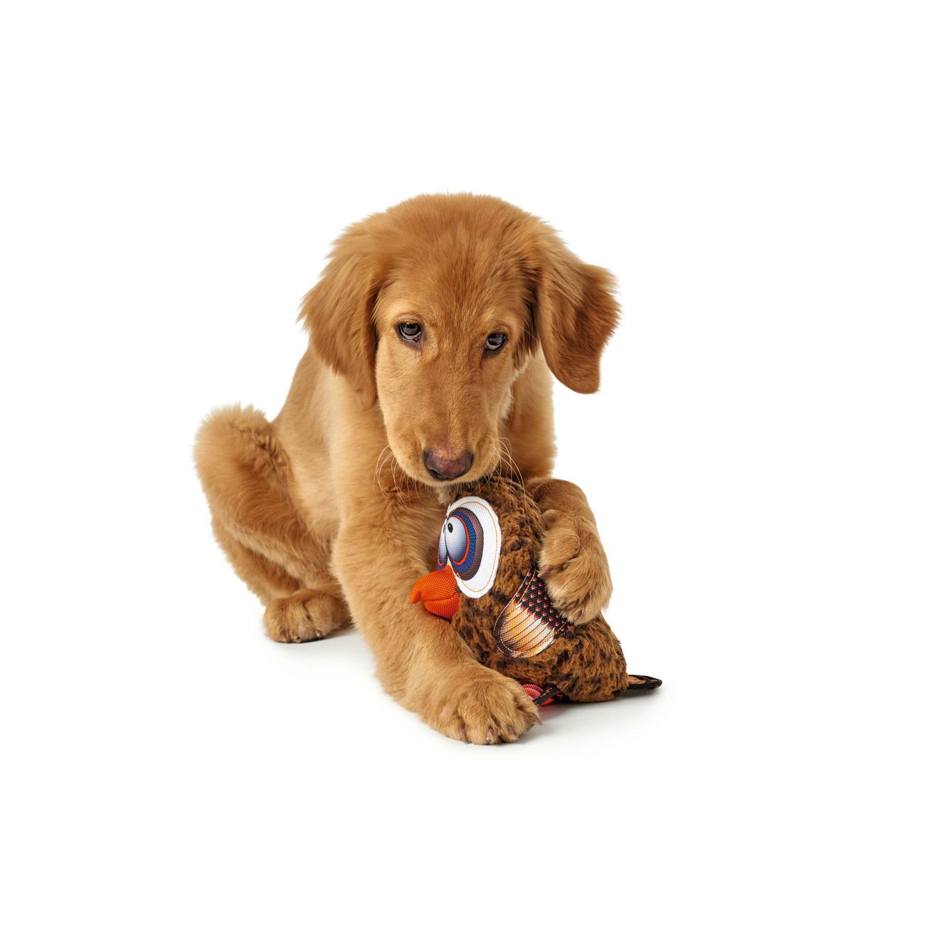 Hunter Hundespielzeug Gurupi 65725, Bild 6