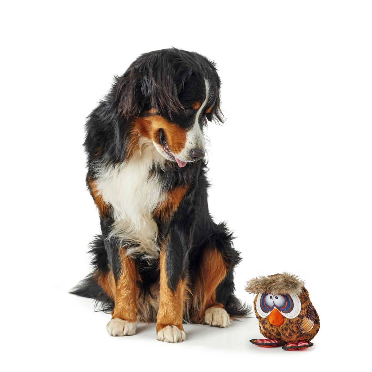 Hunter Hundespielzeug Gurupi 65725, Bild 7