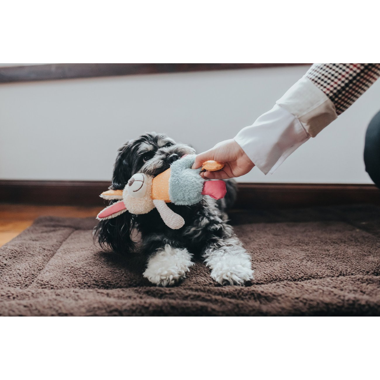 Hunter Hundespielzeug Muli 67752, Bild 2