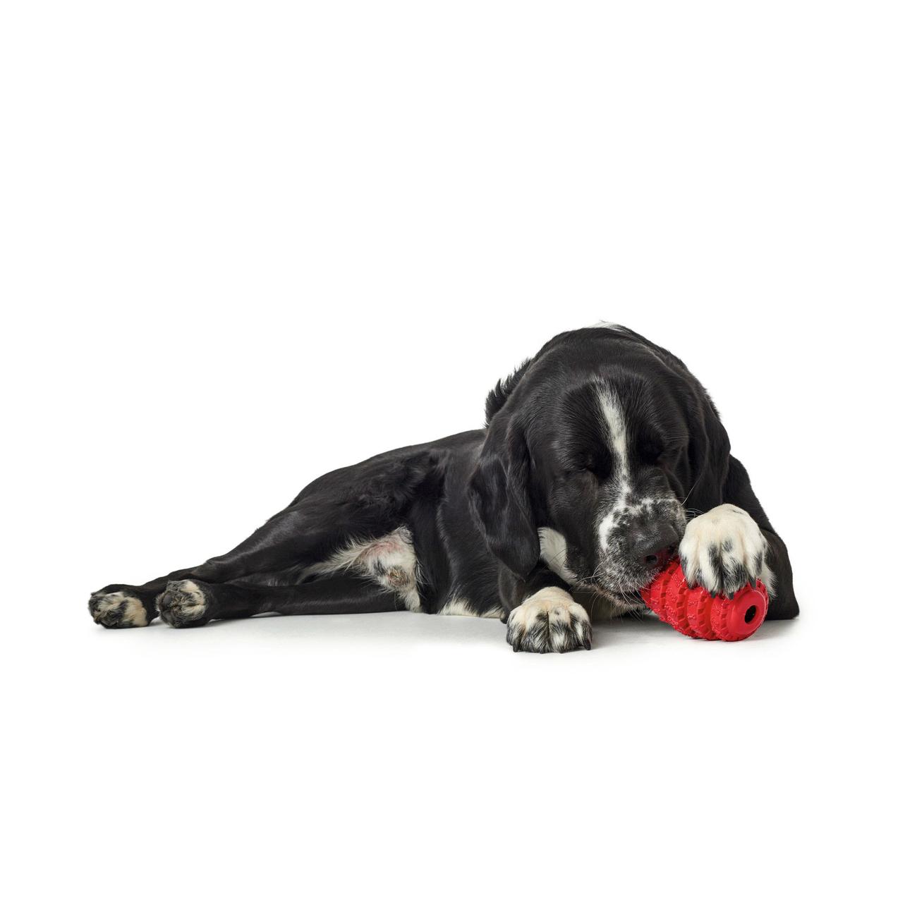 Hunter Hundespielzeug Talvik Reifen 65983, Bild 2
