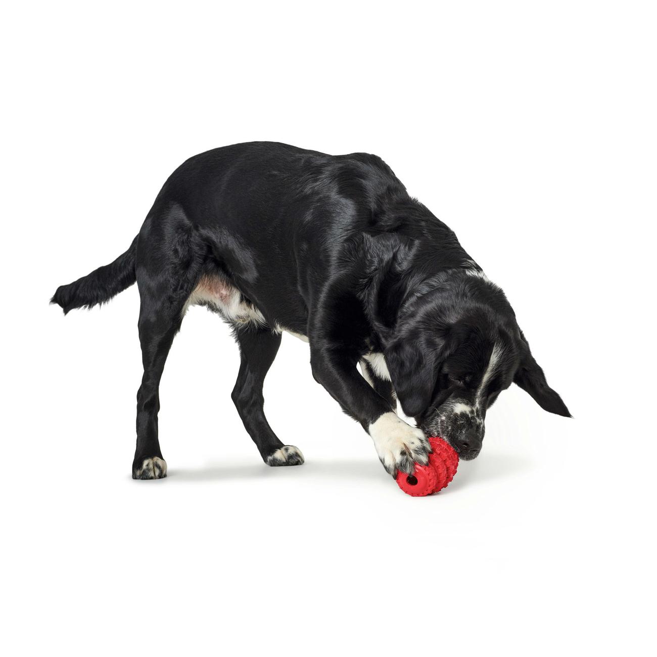 Hunter Hundespielzeug Talvik Reifen 65983, Bild 3