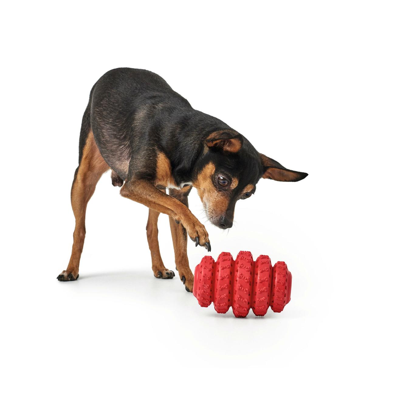 Hunter Hundespielzeug Talvik Reifen 65983, Bild 4