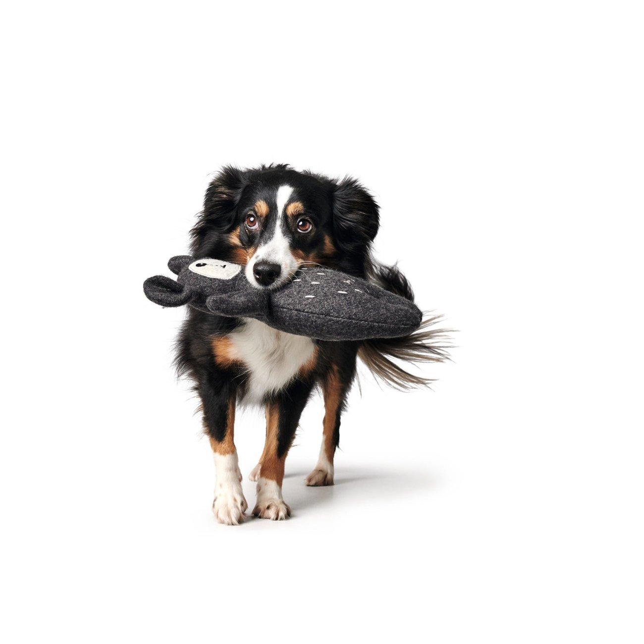 Hunter Hundespielzeug Tirana 67787, Bild 5