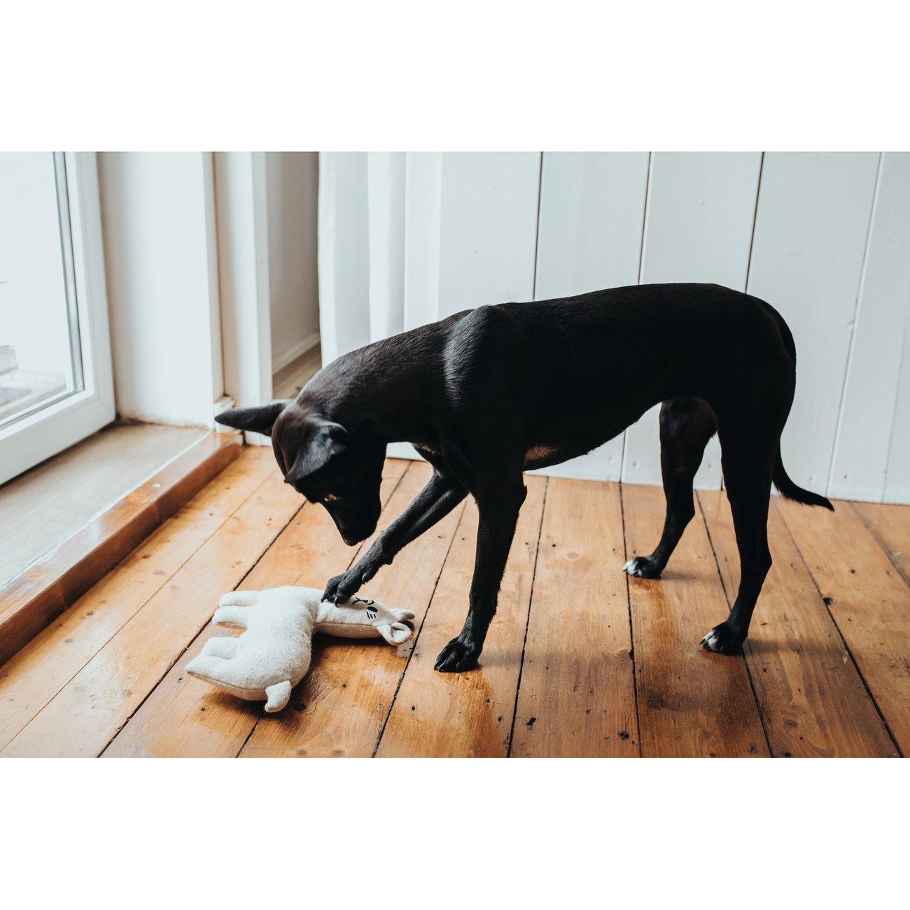 Hunter Hundespielzeug Tirana 67787, Bild 6