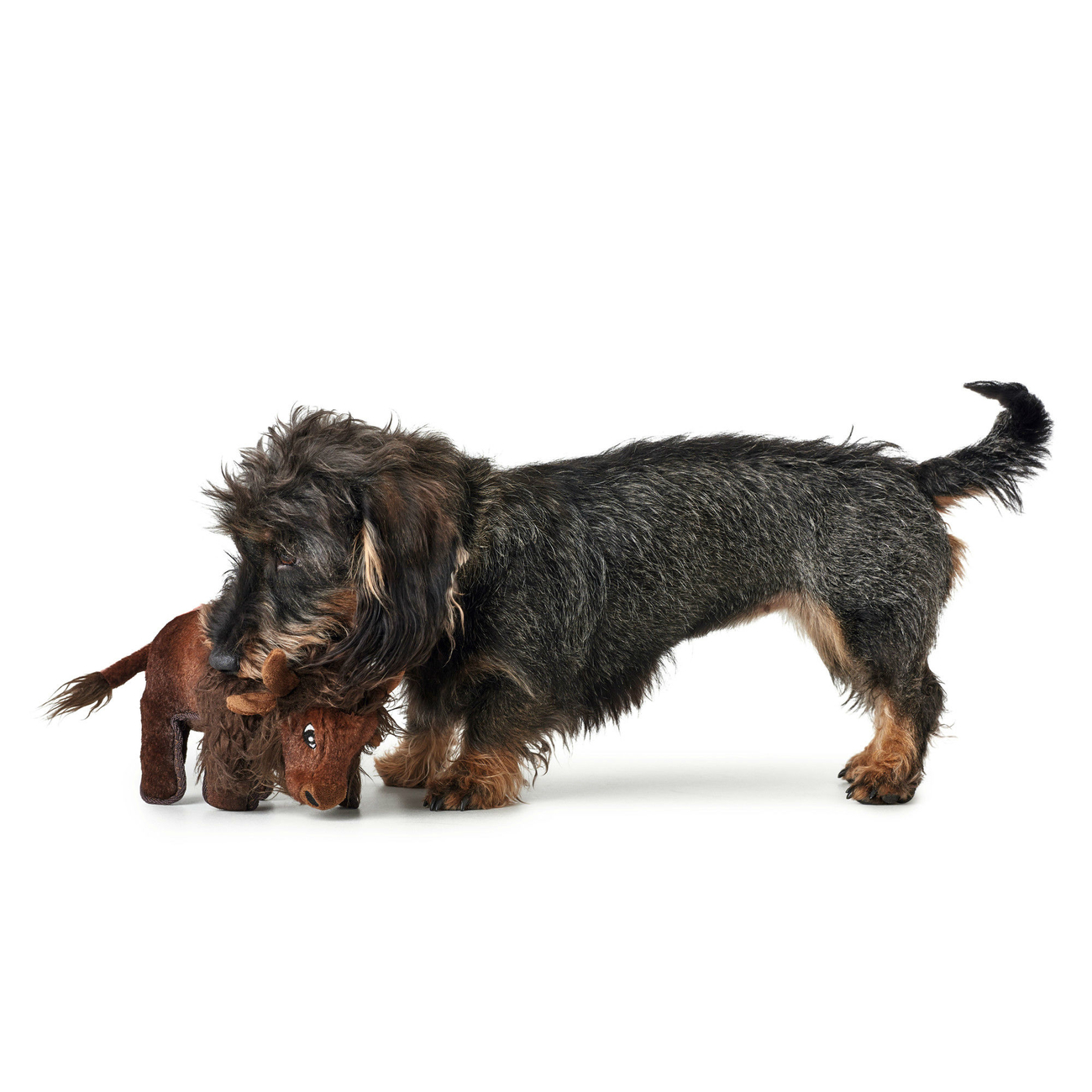 Hunter Hundespielzeug Tough Kamerun Stofftier 65719, Bild 7