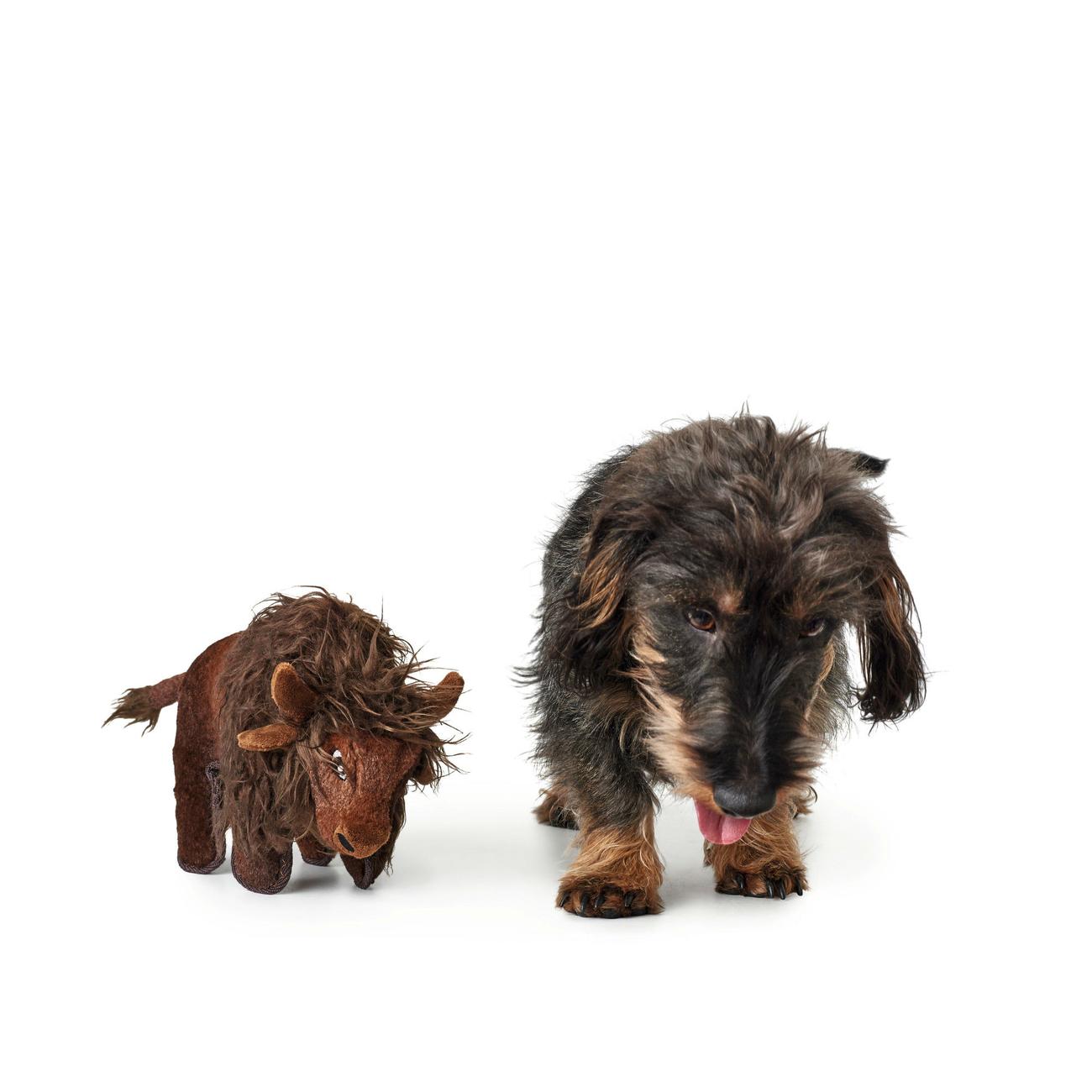 Hunter Hundespielzeug Tough Kamerun Stofftier 65719, Bild 9
