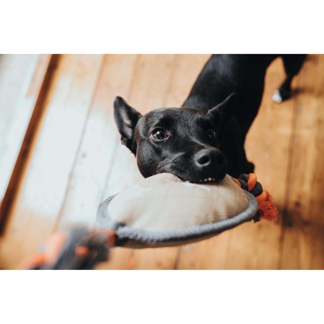 Hunter Hundespielzeug Tough Pombas , Bild 5