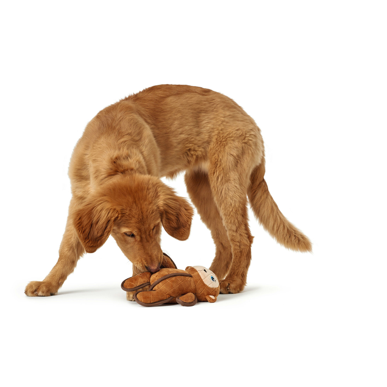 Hunter Hundespielzeug Tough Toys 66549, Bild 4