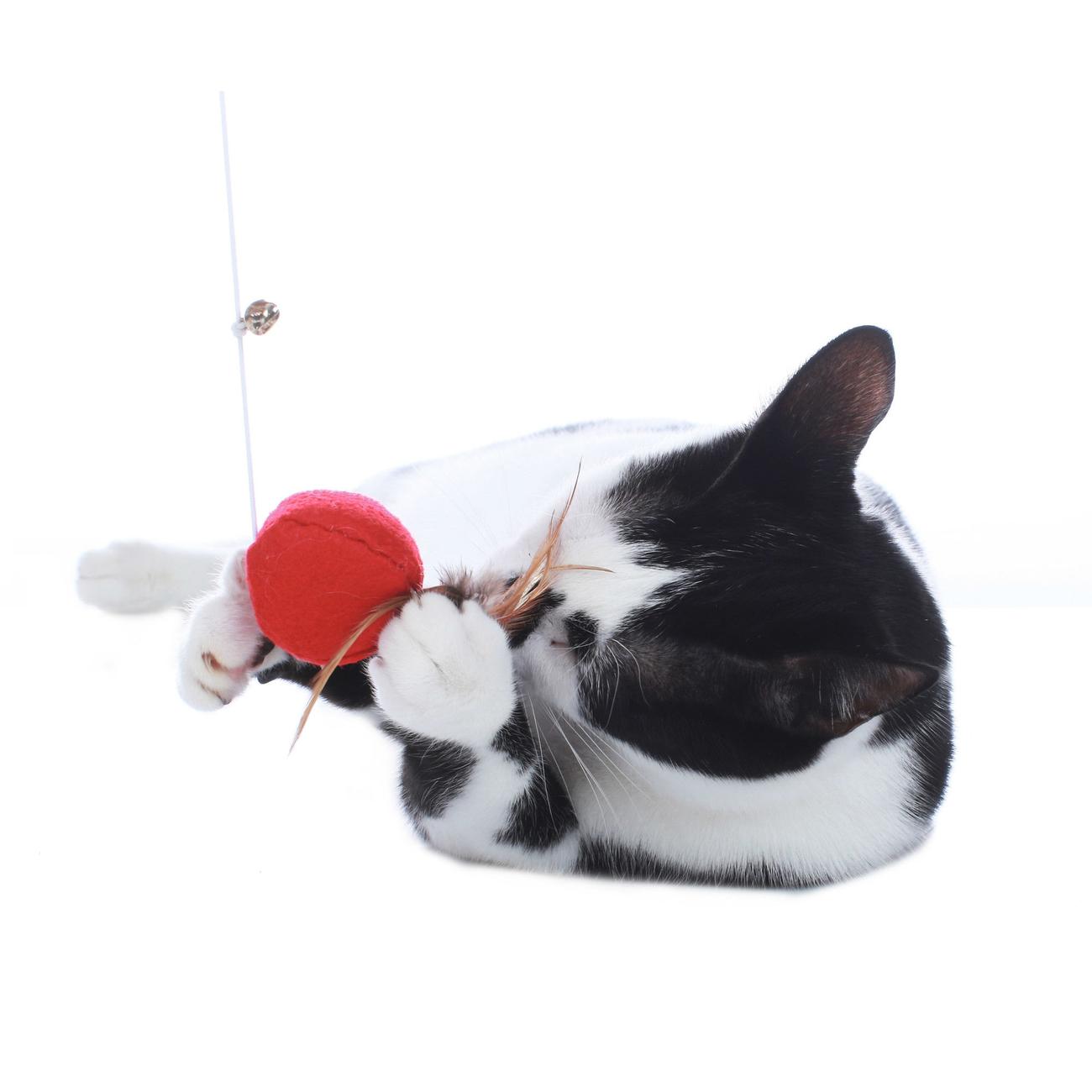 Hunter Katzen Spielangel by Laura 65908, Bild 5