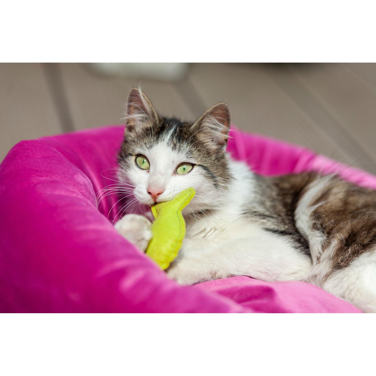 Hunter Katzenspielzeug by Laura 65902, Bild 4