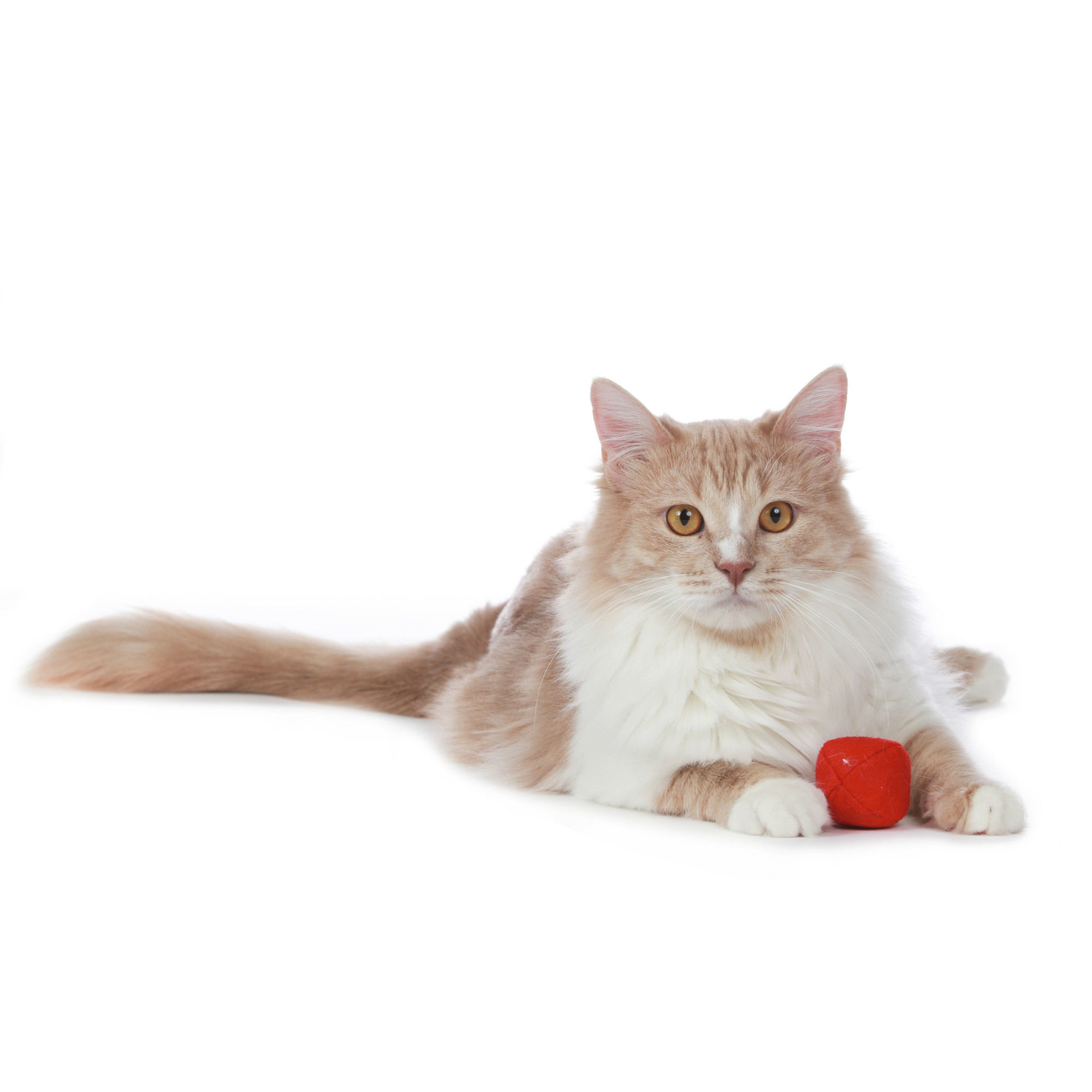 Hunter Katzenspielzeug by Laura 65902, Bild 11