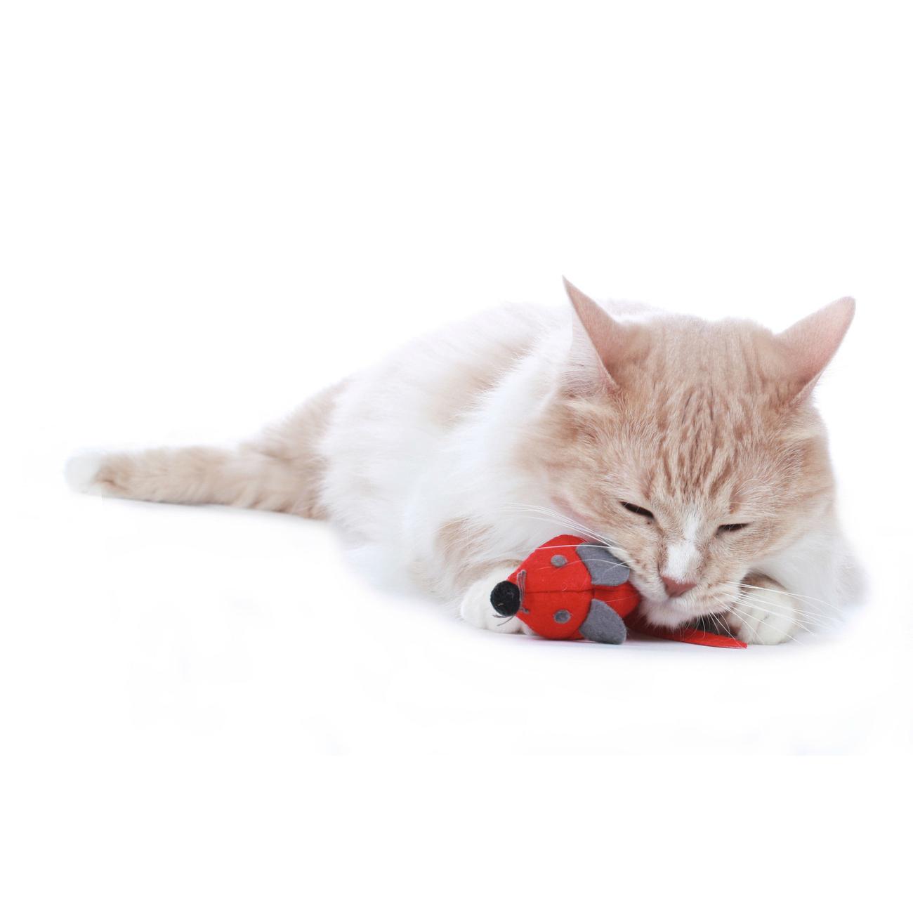 Hunter Katzenspielzeug by Laura 65902, Bild 12