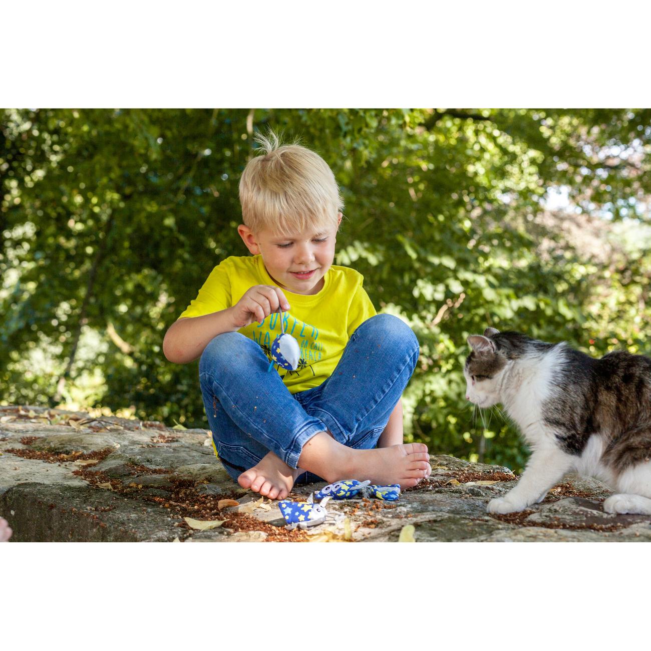 Hunter Katzenspielzeug Kerikeri 65740, Bild 6