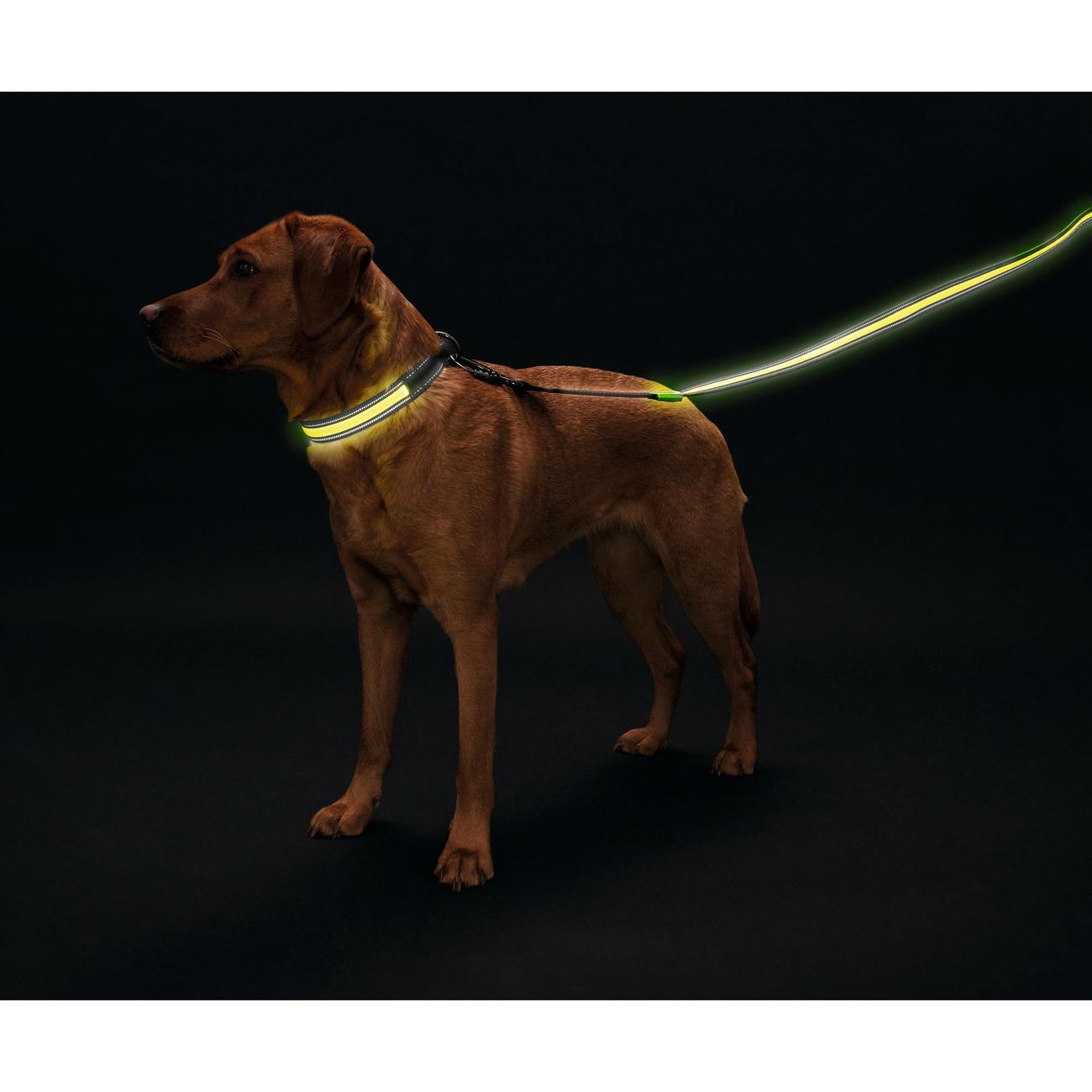 Hunter LED Leuchtleine Manoa Glow , Bild 6