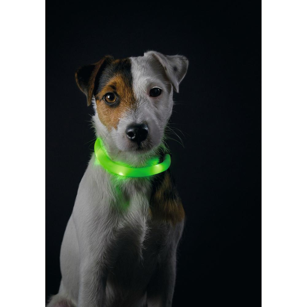 Hunter LED Silikon Leuchtschlauch für Hunde Yukon 90236, Bild 12