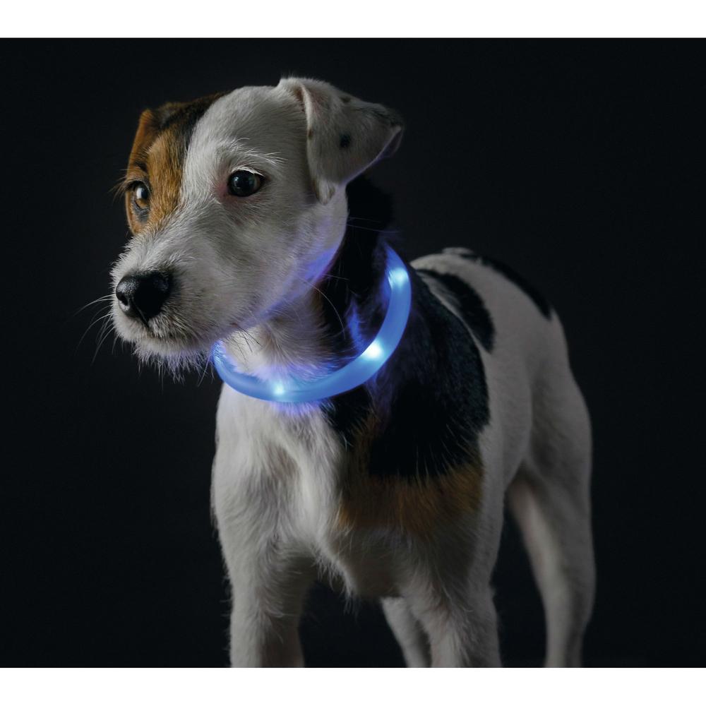 Hunter LED Silikon Leuchtschlauch für Hunde Yukon 90236, Bild 13
