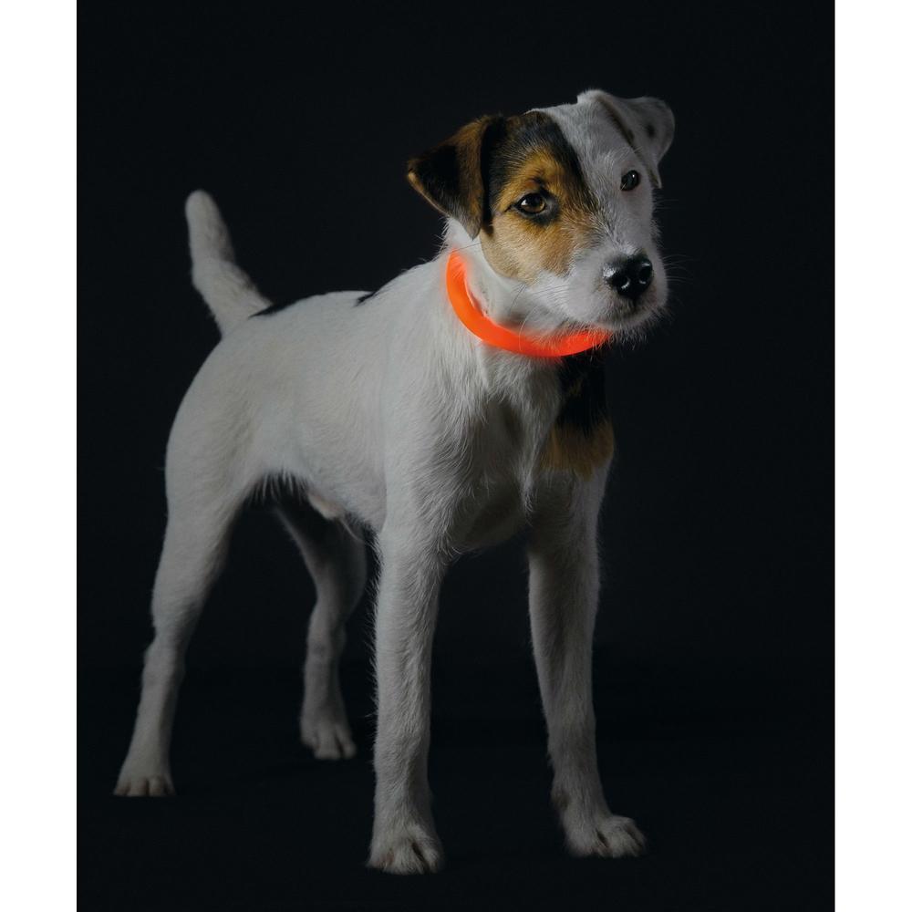 Hunter LED Silikon Leuchtschlauch für Hunde Yukon 90236, Bild 14