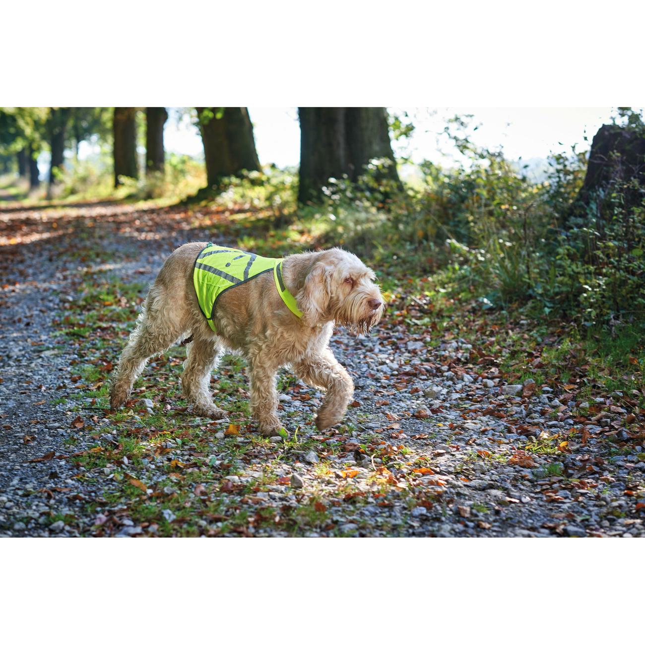 Hunter Warnweste für Hunde 42229, Bild 2