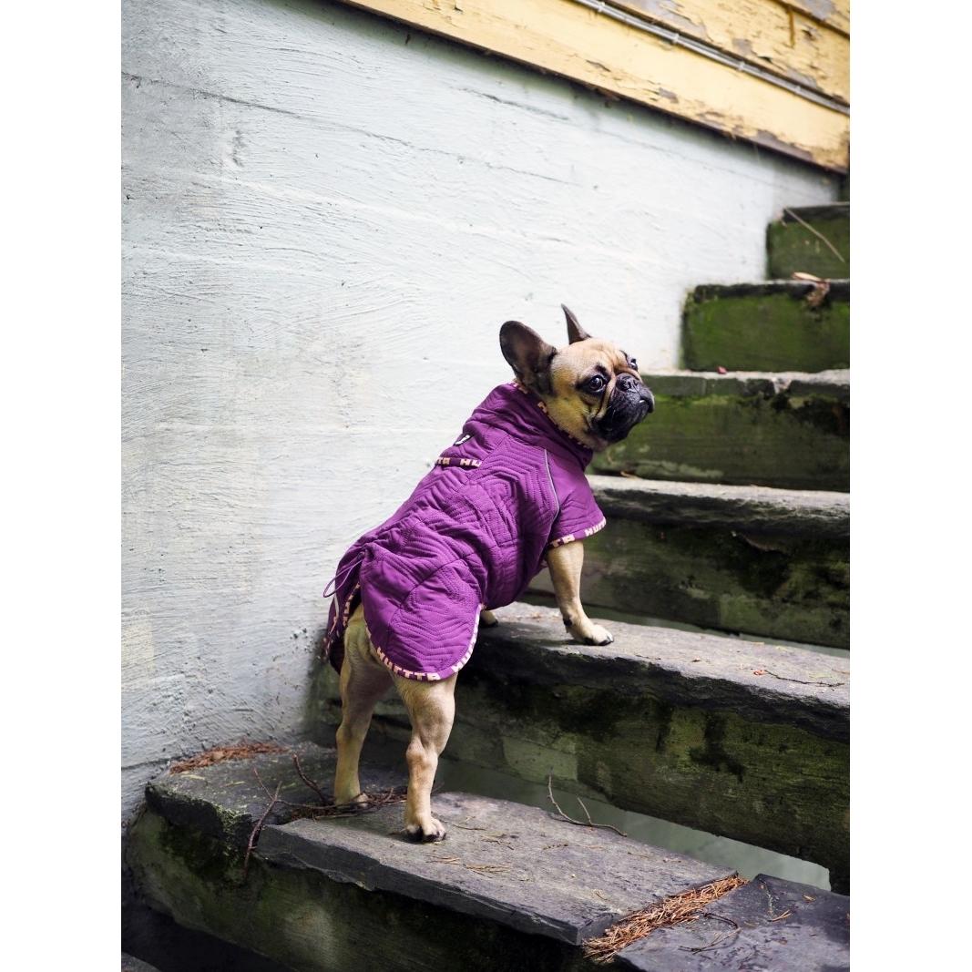 HURTTA Casual Hunde Jacke, gesteppt, für Mops und Bulldoggen, Bild 3