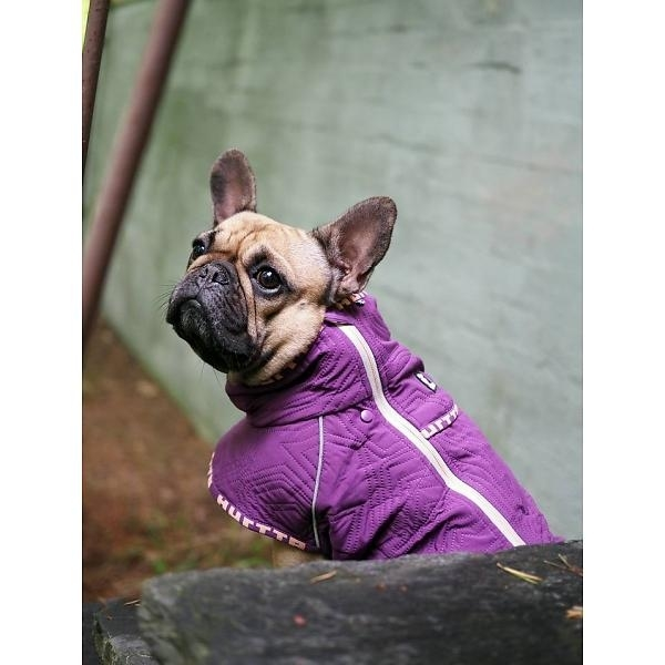 HURTTA Casual Hunde Jacke, gesteppt, für Mops und Bulldoggen, Bild 4