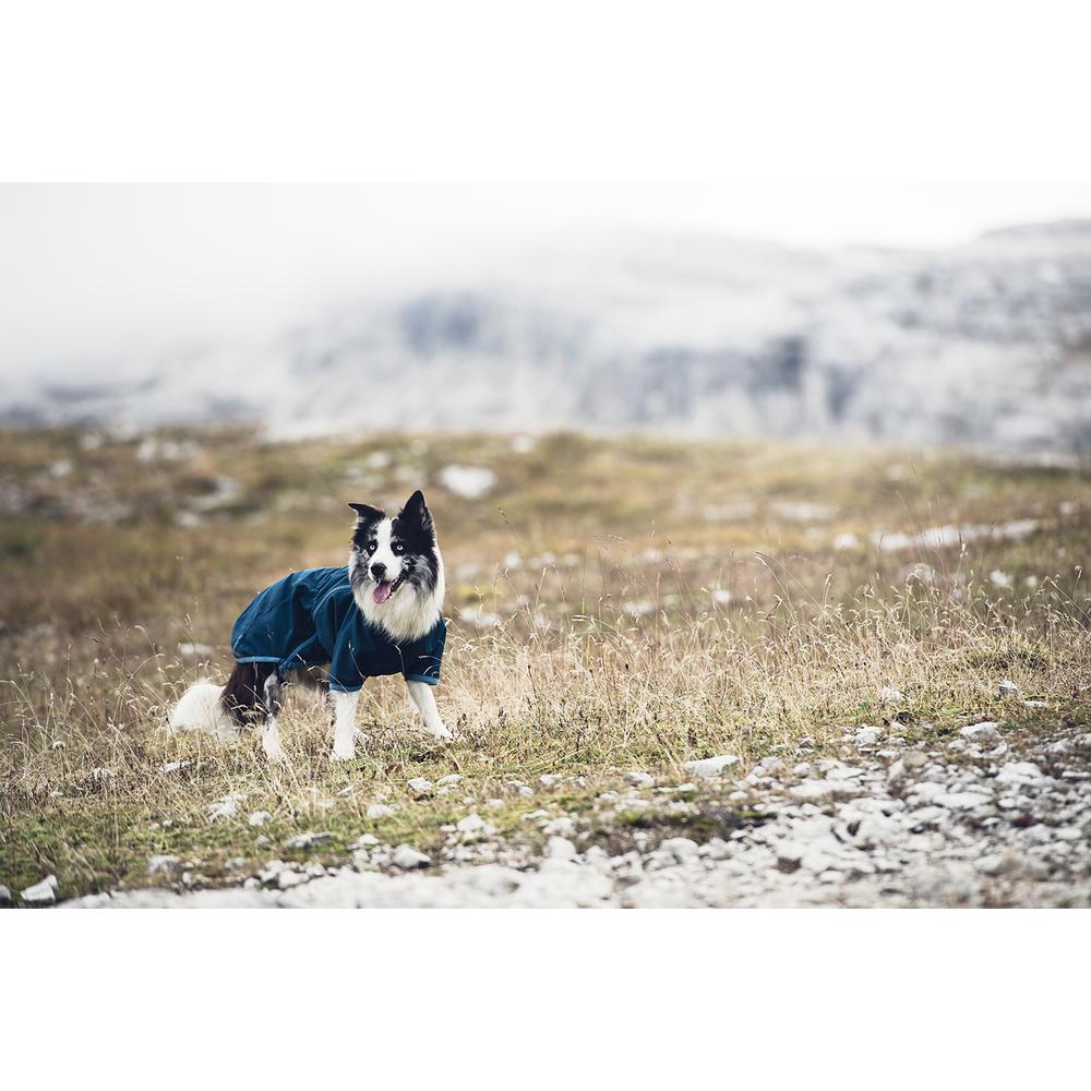 HURTTA Chill Stopper Softshell Mantel für Hunde, Bild 5