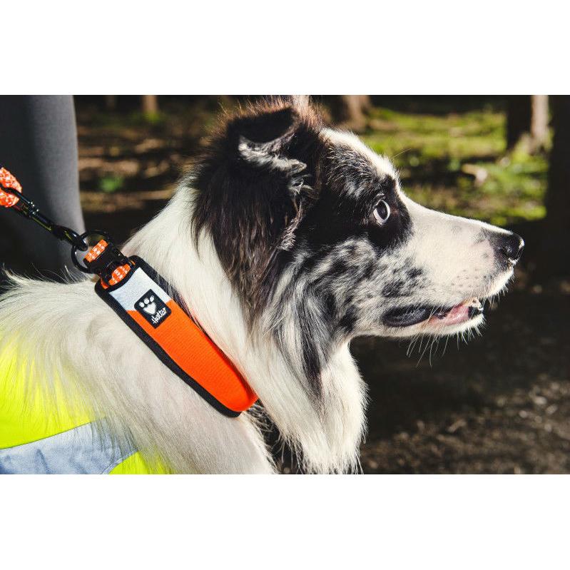 HURTTA Lifeguard Dazzle gepolstertes Halsband, Bild 9