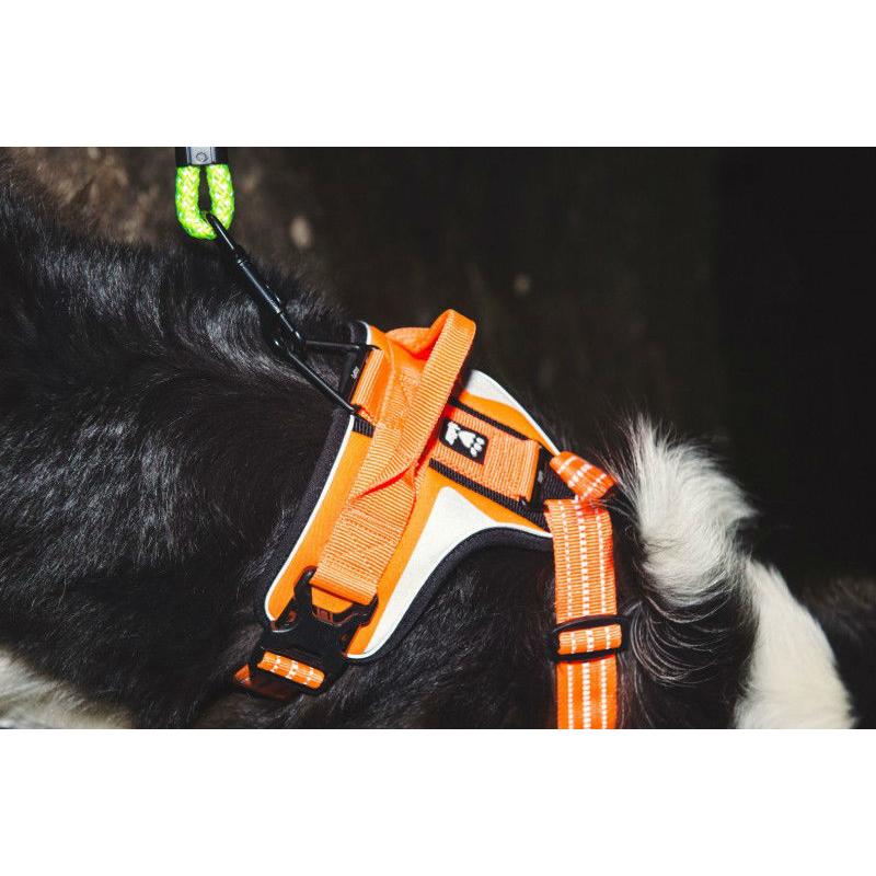 HURTTA Lifeguard Dazzle Hundegeschirr, Bild 9
