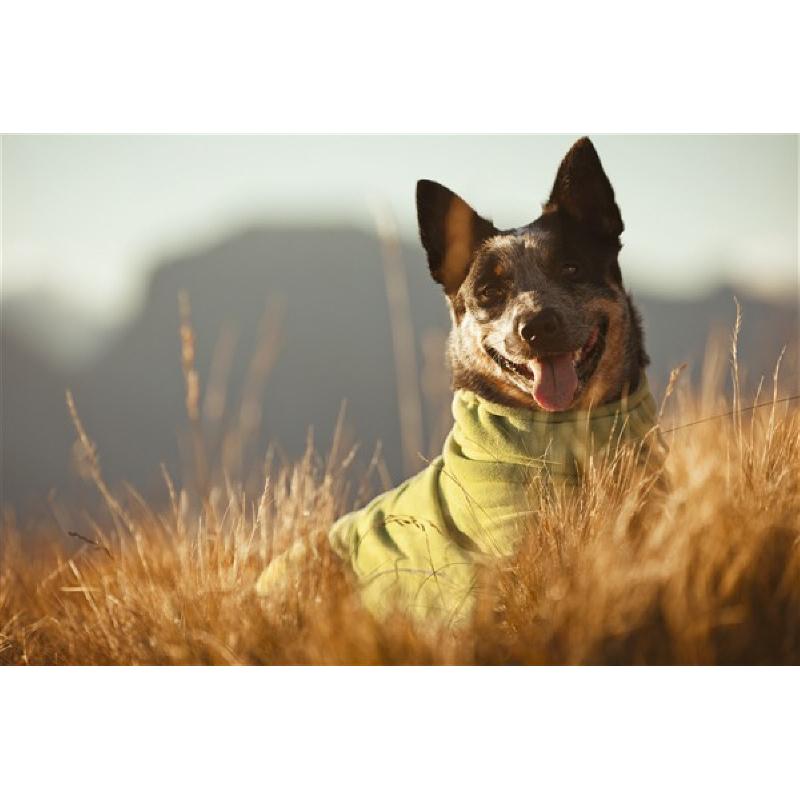 HURTTA Microfleece Overall für Hunde, Bild 2