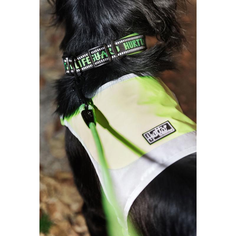 HURTTA Mikro Weste für Hunde, Bild 5