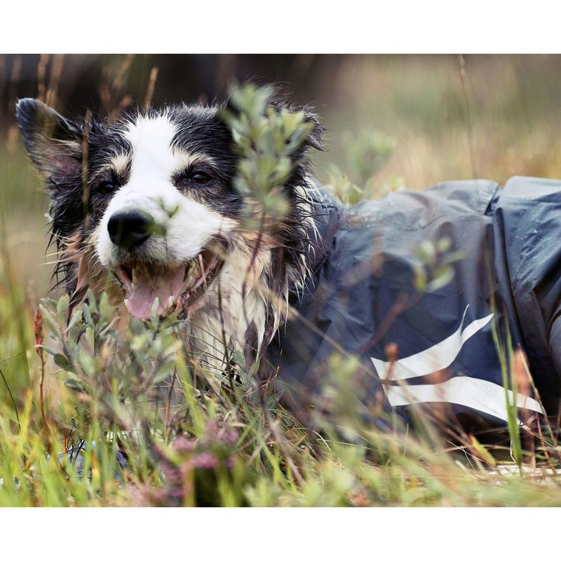 HURTTA Slush Combat Suit Hundeoverall, Bild 7