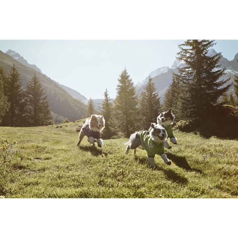 HURTTA Softshelljacke für Hunde Frost Jacket, Bild 3