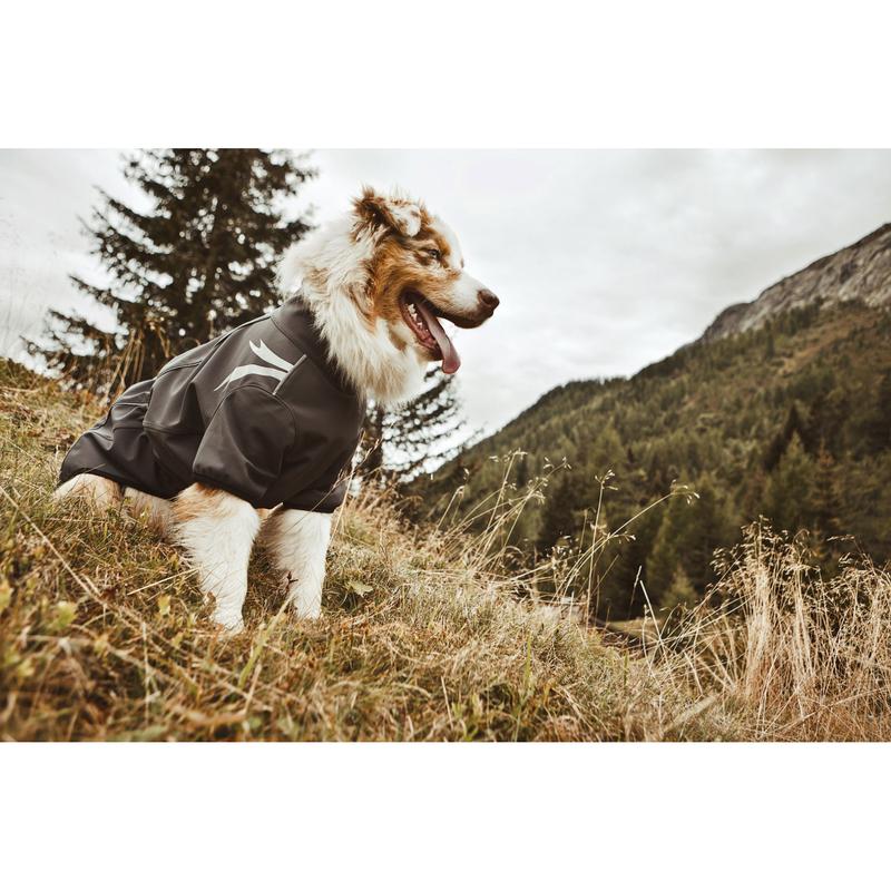 HURTTA Softshelljacke für Hunde Frost Jacket, Bild 6