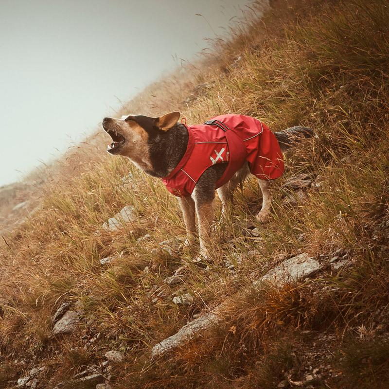 HURTTA Torrent Regenmantel für Hunde, Bild 8