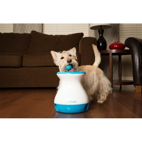 iFetch Frenzy Ballschleuder für Hunde, Bild 3