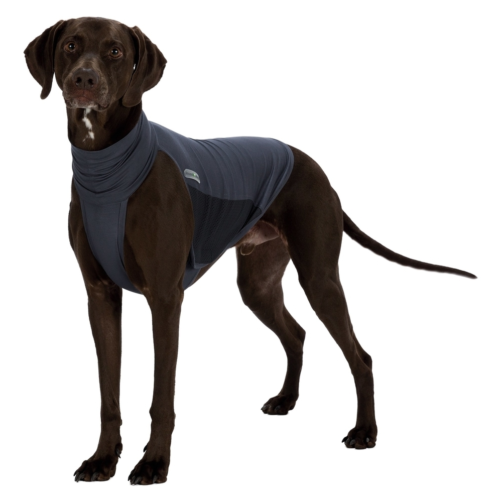 TRIXIE Insect Shield Hunde Weste Insektenschutz 30400
