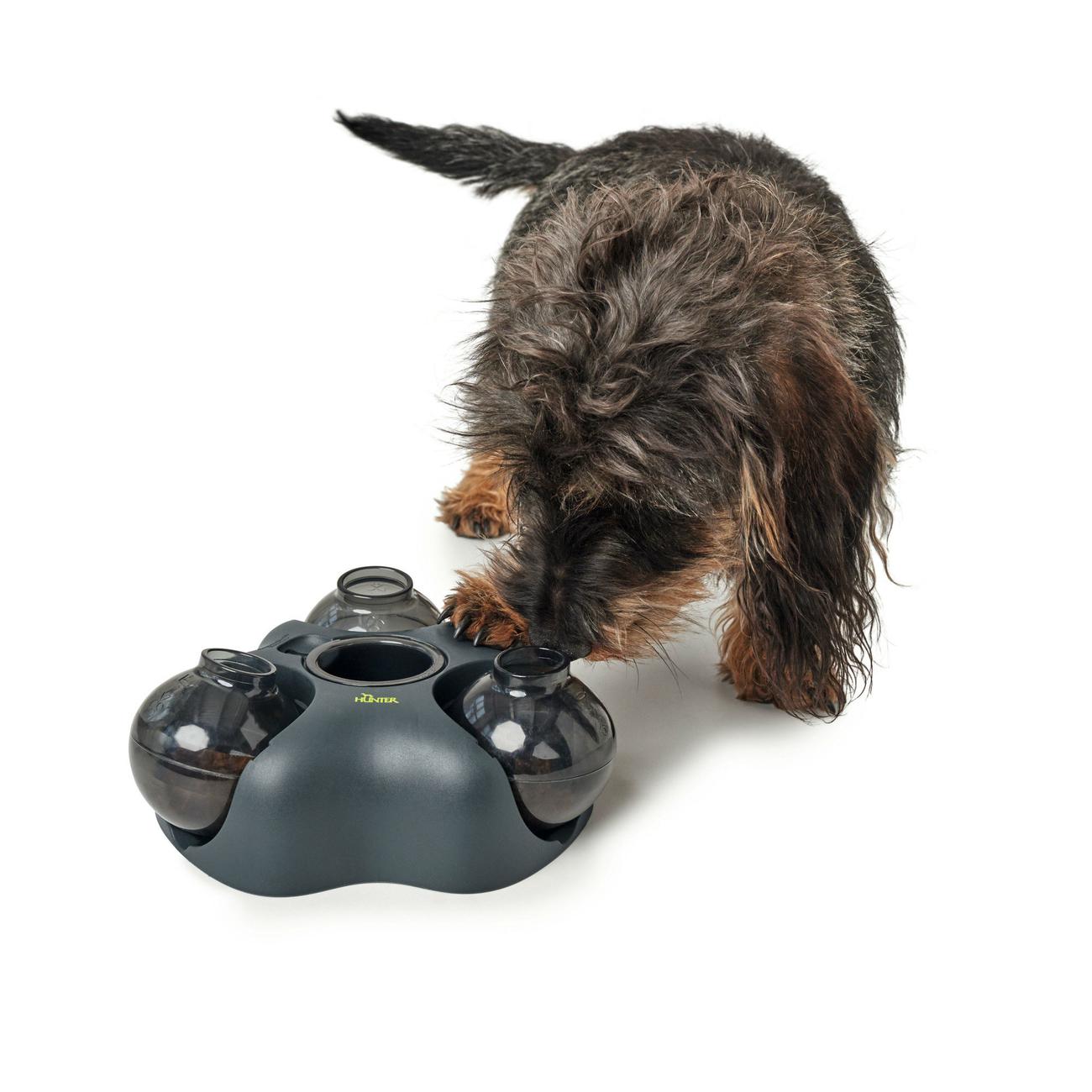 Hunter Intelligenzspielzeug für Hunde und Katzen Kem 65911, Bild 10