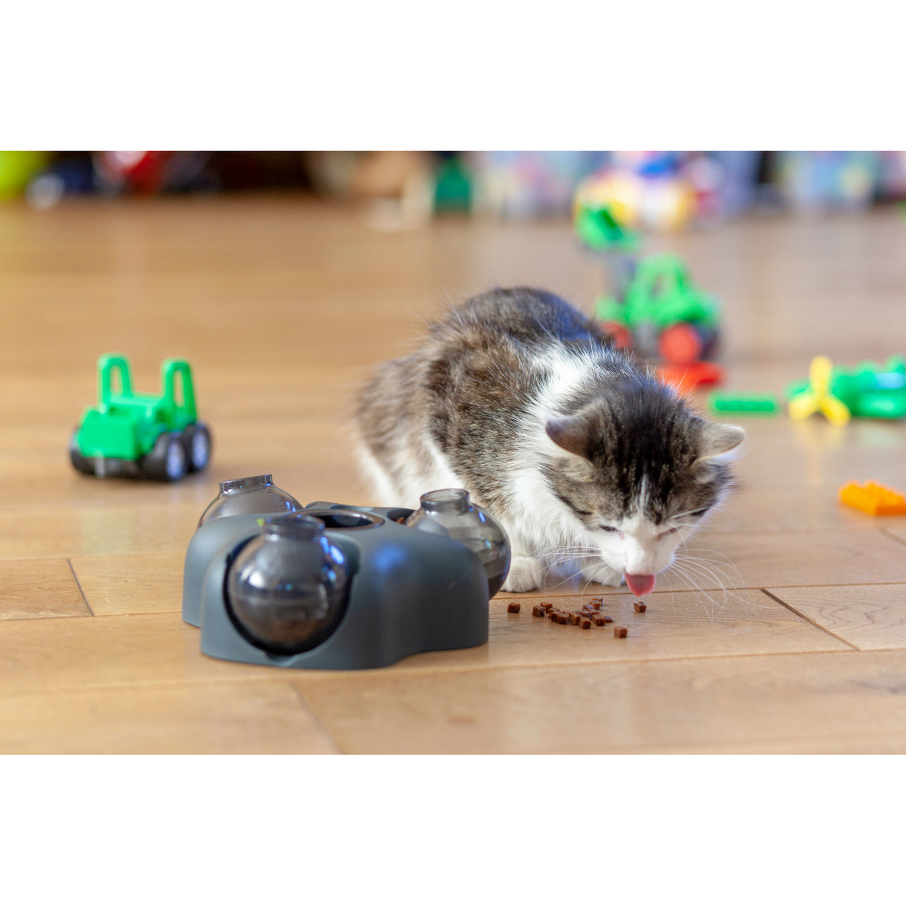 Hunter Intelligenzspielzeug für Hunde und Katzen Kem 65911, Bild 11