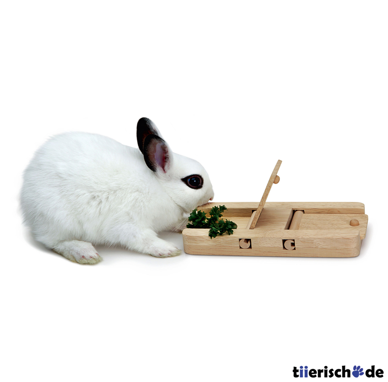 Living World Green Interaktives Intelligenzspielzeug für Kleintiere, Bild 6