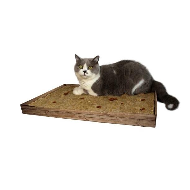 JR Farm JR Cat Aktiv-Teppich für Katzen
