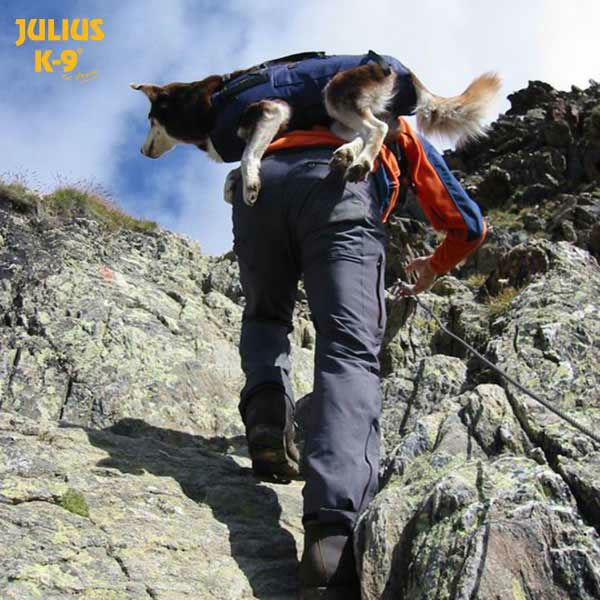 Julius K9 Abseil- und Tragegeschirr für Hunde, Bild 12