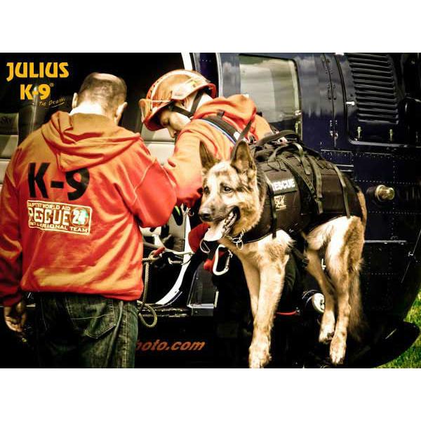 Julius K9 Abseil- und Tragegeschirr für Hunde, Bild 17