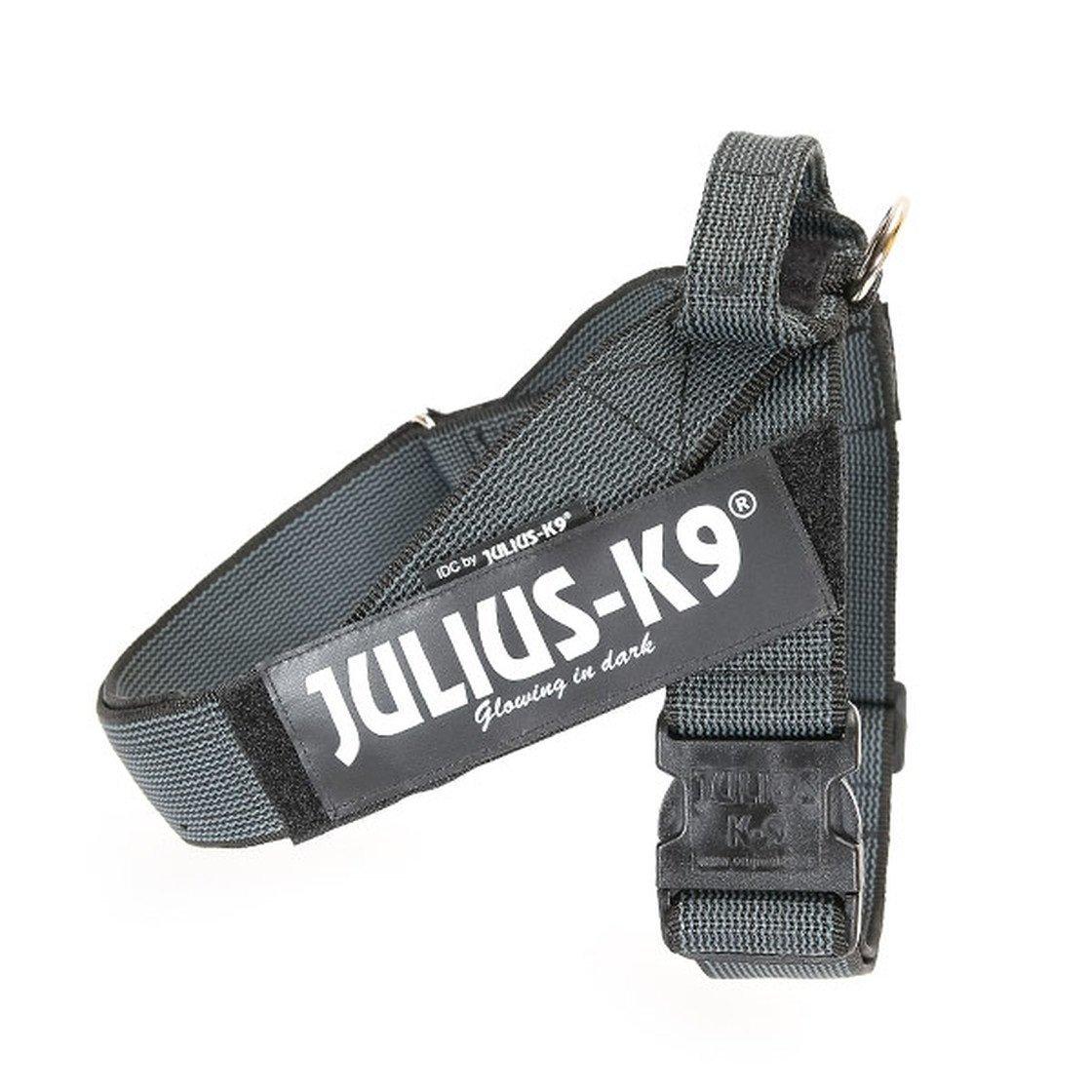 Julius K9 IDC Gurtbandgeschirr Color & Gray, Bild 17
