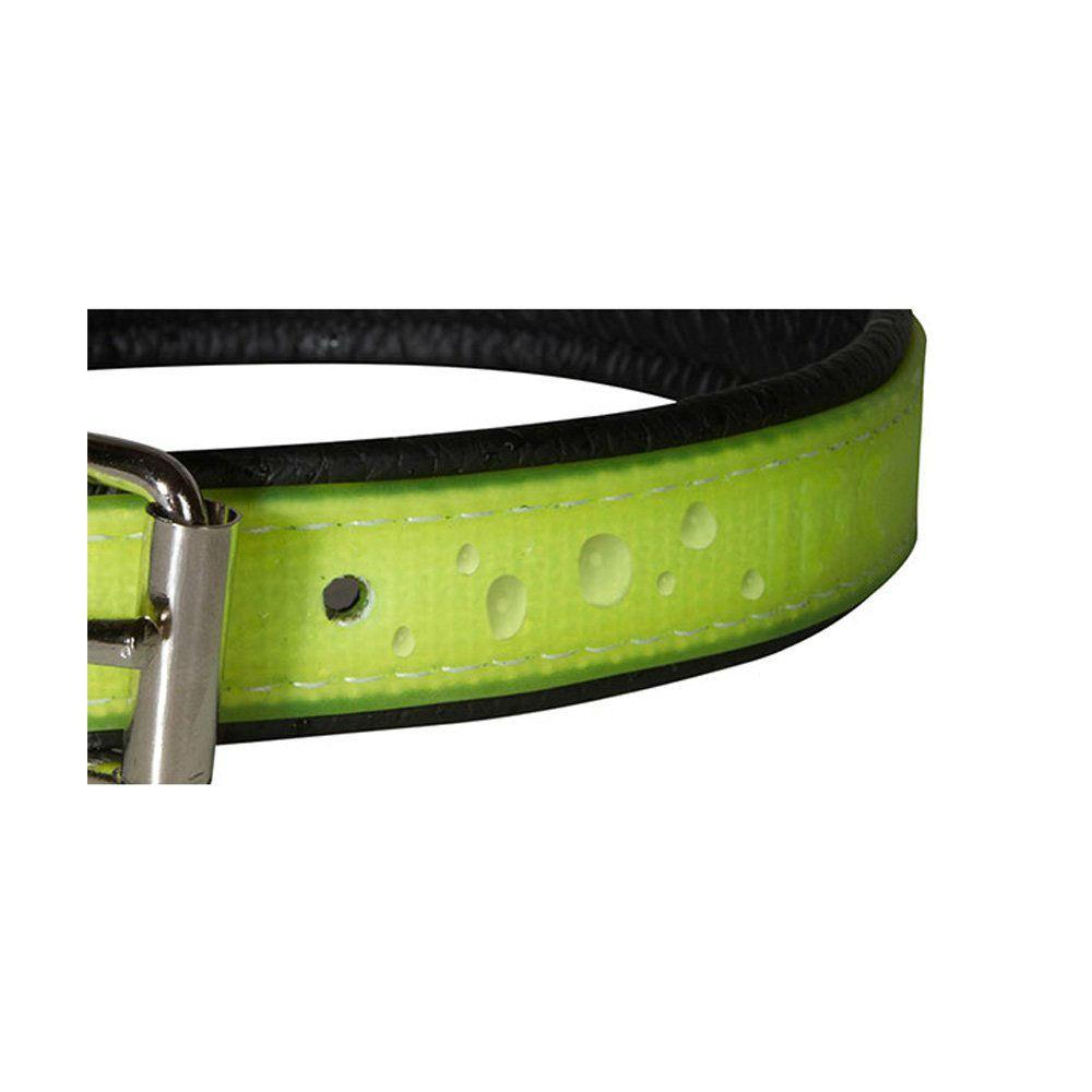 Julius K9 IDC Lumino Halsband, Bild 13