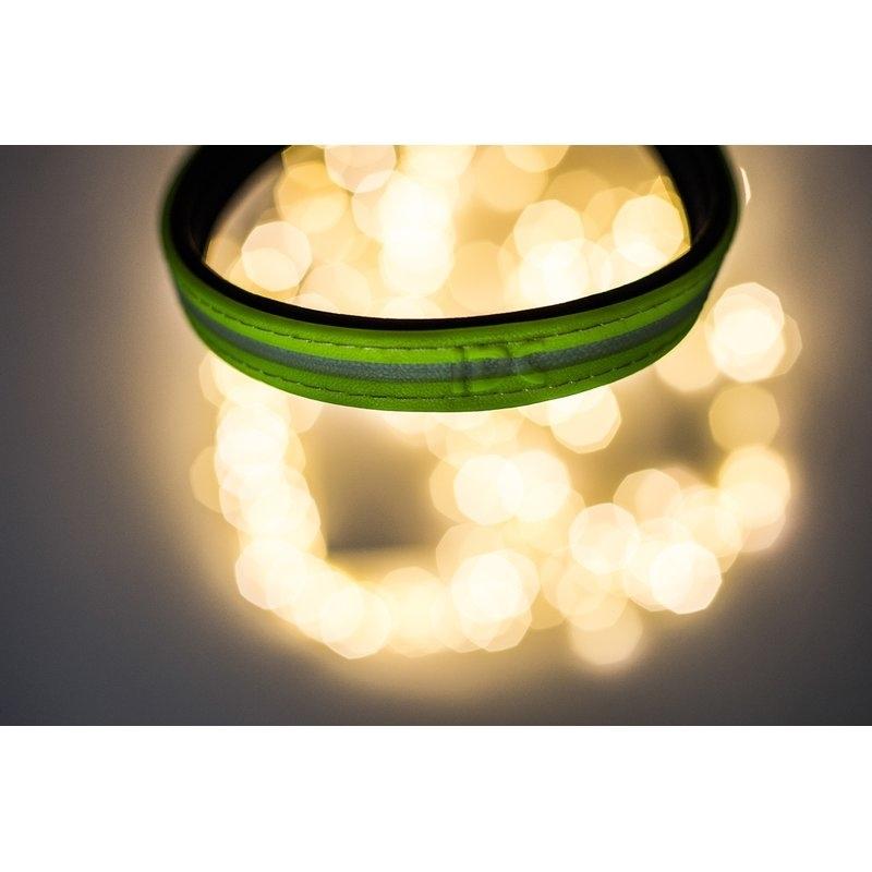 Julius K9 IDC Lumino Halsband, Bild 16