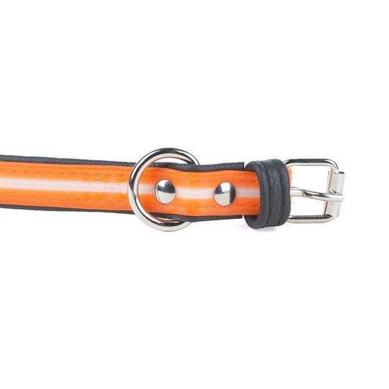Julius K9 IDC Lumino Halsband, Bild 15